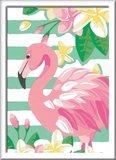 Schilderen op Nummer - Flamingo