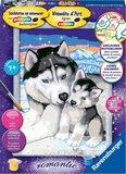Schilderen op Nummer - Huskies
