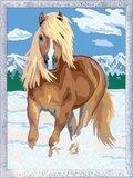 Schilderen op Nummer - Paard