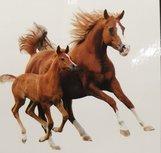 Plaid Microfiber grand luxe Paard