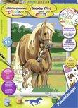 Schilderen op Nummer - Paardenliefde