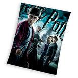 Harry Potter fleece deken
