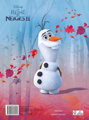 Frozen 2 kleurblok