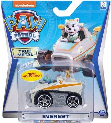 Paw Patrol Die cast voertuig -  Everest - 7 cm