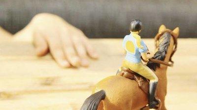 Tiptoi - Paardrijset