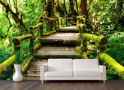 Fotobehang Jungle, Brug door het oerwoud, nr 486  400 x 280 cm