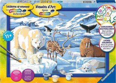 Schilderen op Nummer - Op het ijs